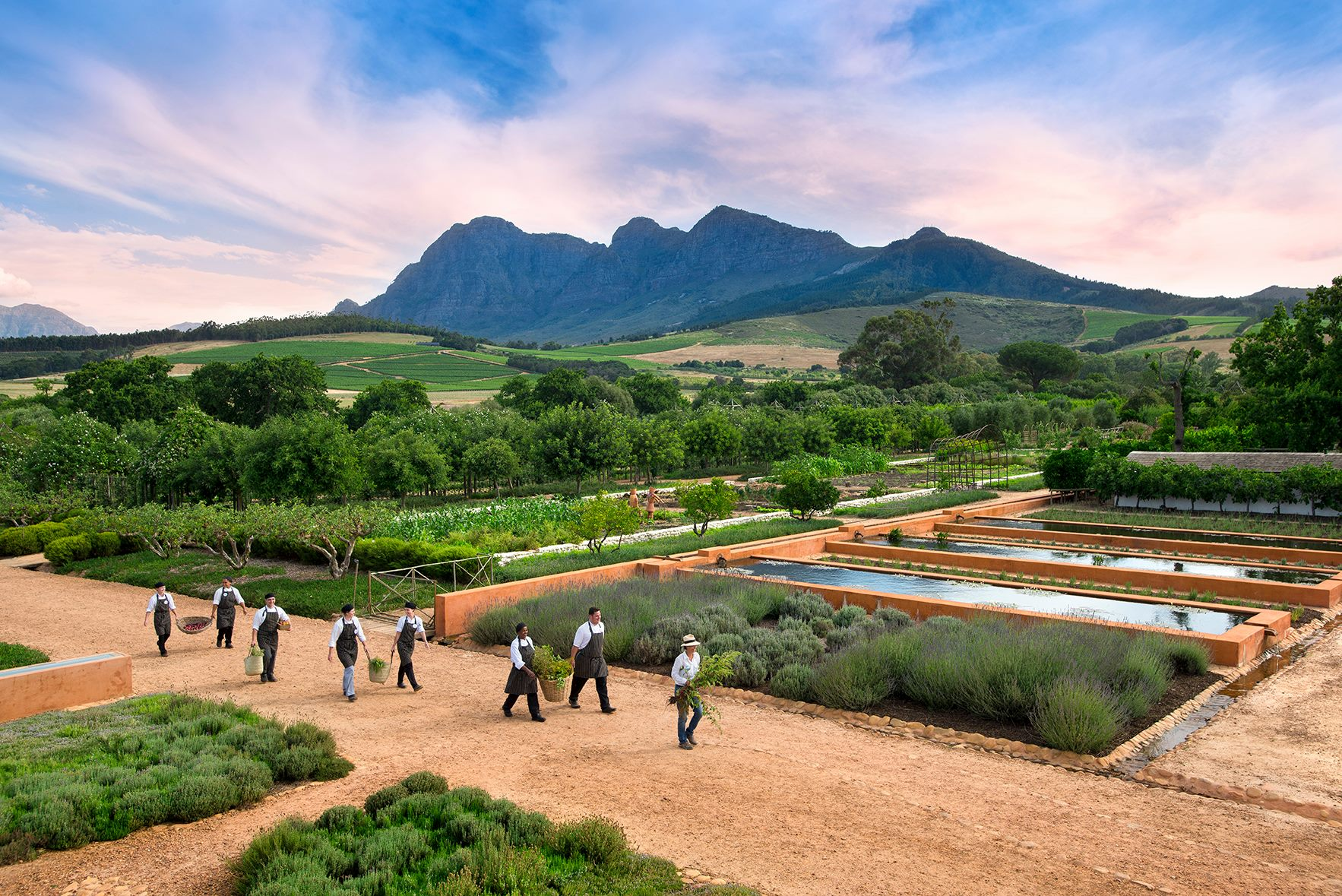 Babylonstoren south africa travel stijlmeisje for Jardin wine south africa
