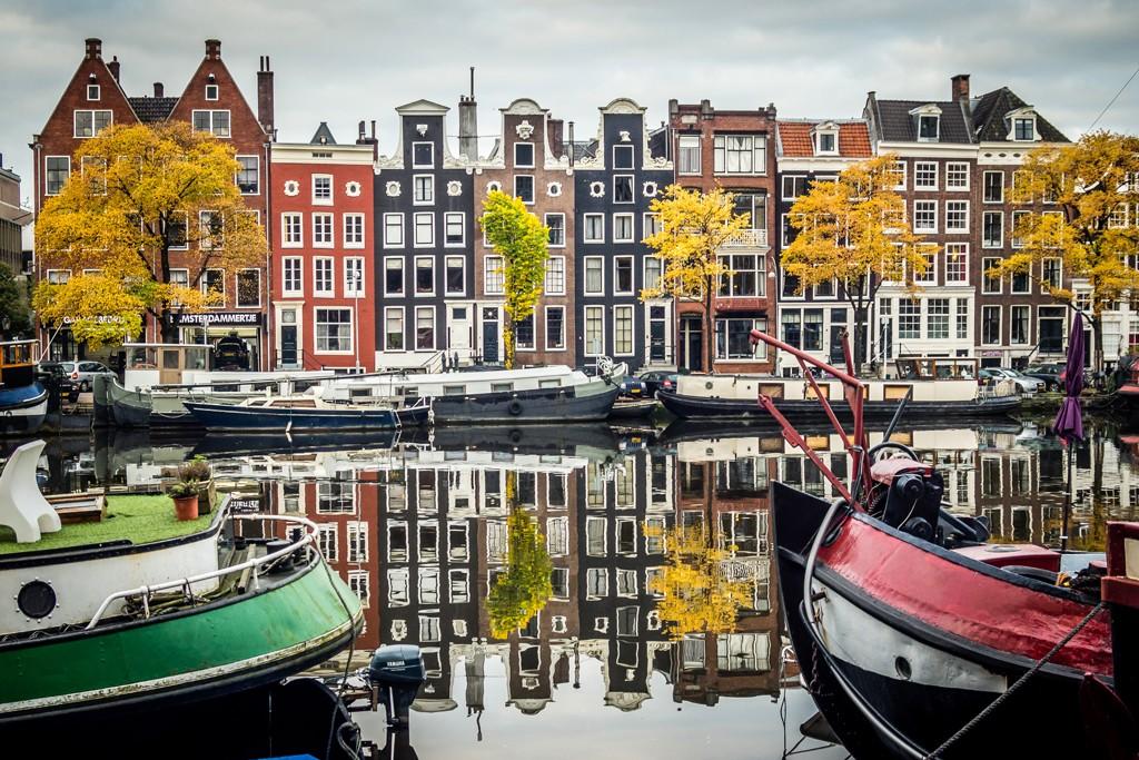 Capture Amsterdam - Canal Trees - Michal Fasanek